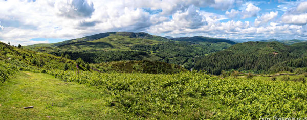 Another panaroma view of Coed y Brenin ('King's Forest') and Bryniau Glo
